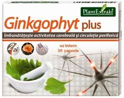 ginkgophyt plus