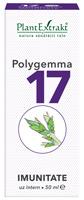 Polygemma nr17