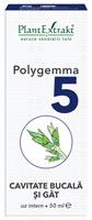 Polygemma-nr5